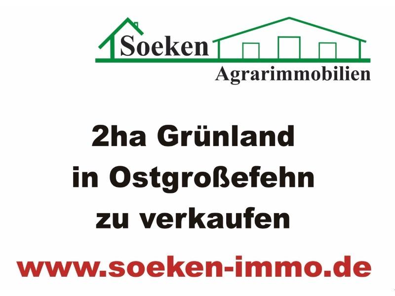 Landwirtschaftliche Fläche In Ostgroßefehn Zu Verkaufen.